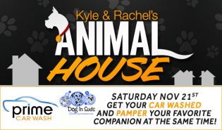 Animal House 11/21 DL