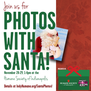 Photos With Santa NOW