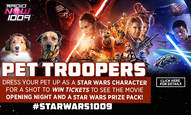 Star Wars Pet Troopers DL