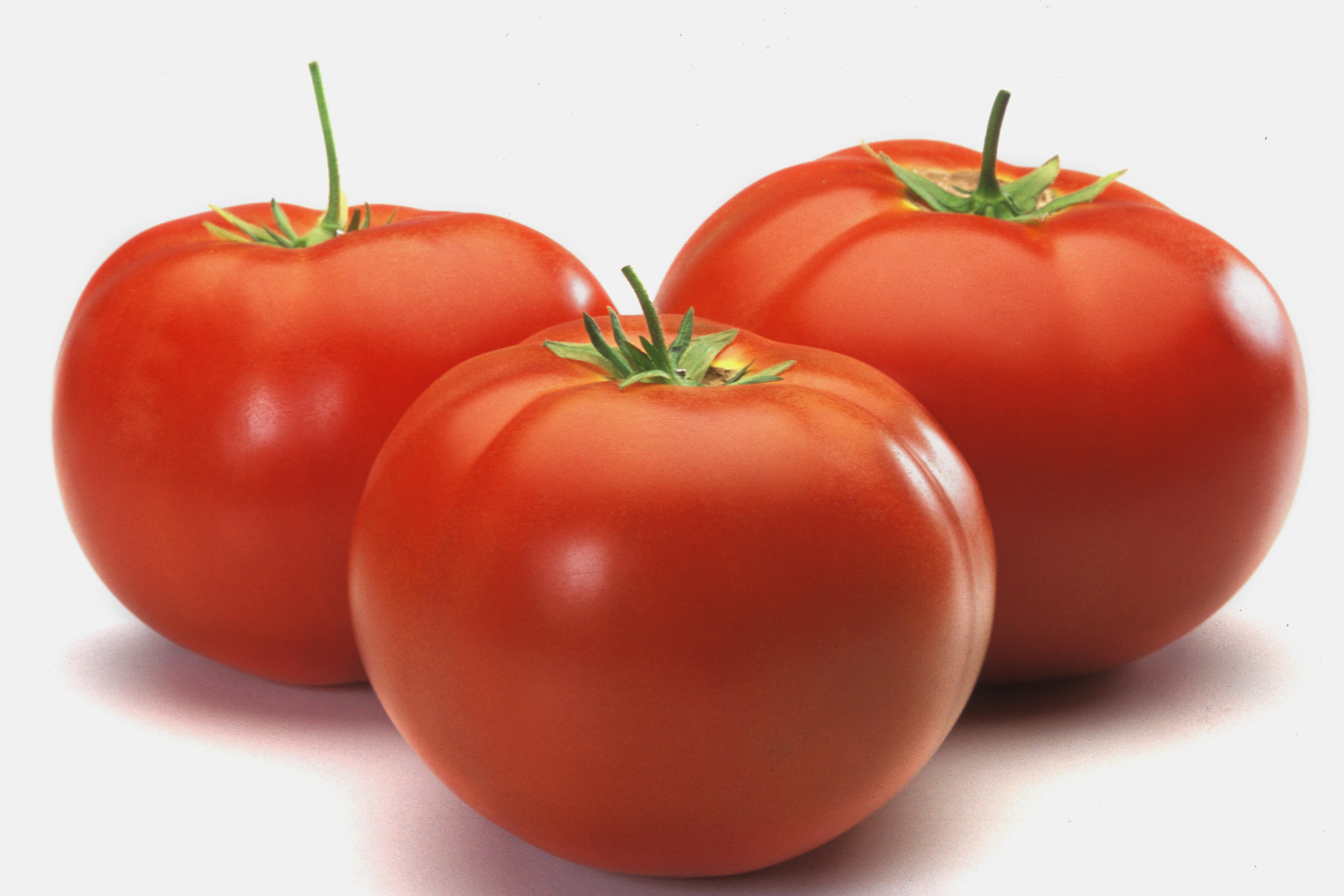 Three tomatoes on counter, close-up