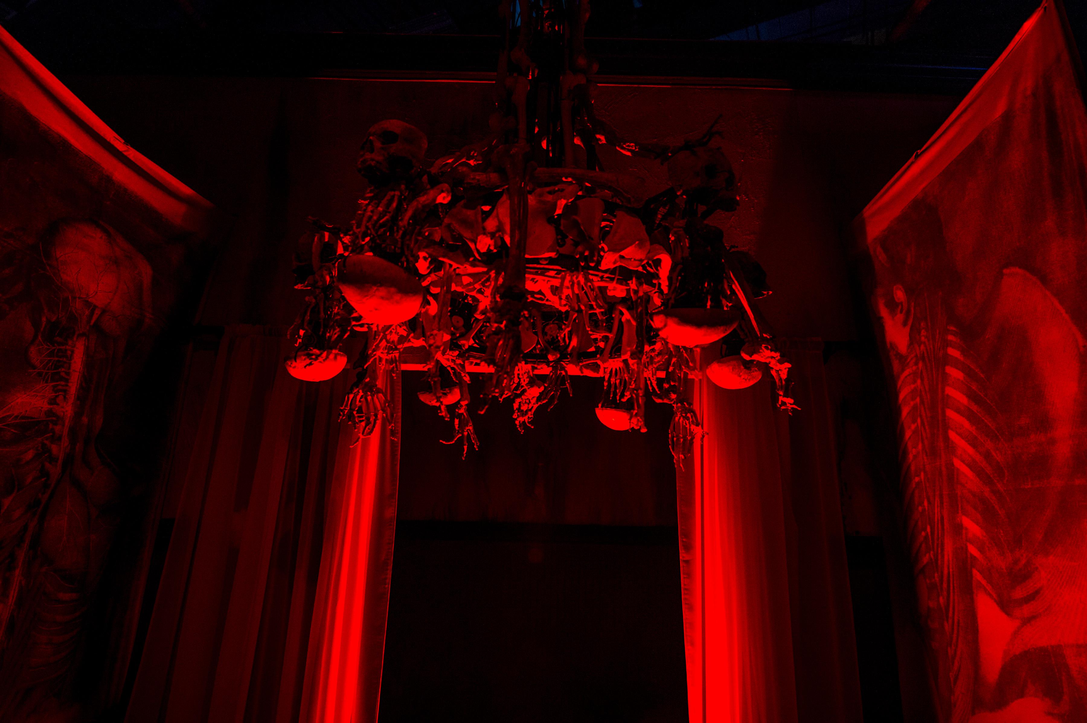Body Collectors Universal Orlando Halloween Horror nights