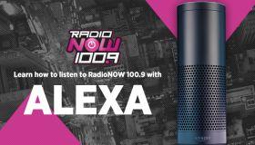 "Indy Station ""Alexa"" Graphics"